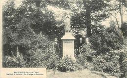 BOUCHOUT LEZ ANVERS - La Vierge De Lourdes, Institut Saint Gabriel. - Boechout