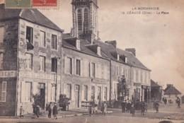 CEAUCE      LA PLACE.  HOTEL DU LION D OR . LIBERT - France
