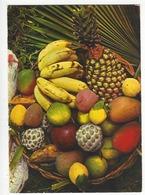 243 - FRUITS TROPICAUX.  - Antilles Touristiques - Non Classés