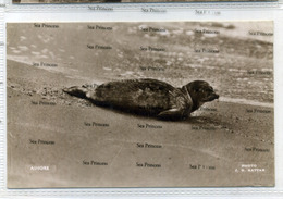 Shetland Postcard JD Rattar 1930s Ashore Seal Used During War With Censor Marks FPO No.67 - Shetland
