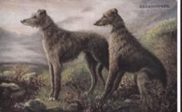 AS90 Animals - Dog - Deerhounds - Dogs