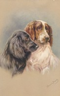 AS90 Animals - Dogs - Spaniels - Artist Signed Jannie Moody - Dogs