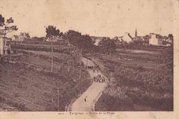 CPA 29 Telgruc Route De La Plage - France
