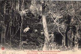 3669 Cpa Cambodge - Angkor Thom - Sur Les Ruines Du Bapuom - Cambodge