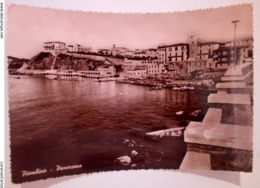 PIOMBINO Panorama VIAGGIATA 1951 LIVORNO - Livorno