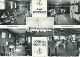 B344  Ruppelmonde - Scaldiana (bar) - Kruibeke