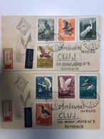 Hungary 1959 FDC - Storchenvögel