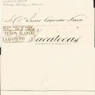J) 1868 MEXICO, BLACK BOX, CIRCULATED COVER, FROM SALINAS DEL PEÑON BLANCO TO ZACATECAS - Mexico