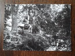 L22/552 SAINT-ZACHARIE . Sous Bois , Source Des Nayes - Saint-Zacharie