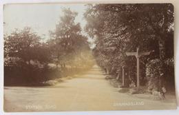 CPA Qualité Photo Dormansland Station Road Personnage Chien 1926 Royaume Uni - Surrey