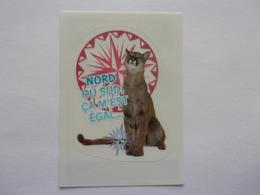 PANINI ANIMAL WORLD Animaux N°270 Chat Cat Katze Gato - Edition Française