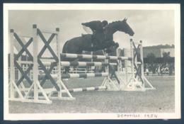 Hippisme DEAUVILLE 1954 Edelweis - Horse Show