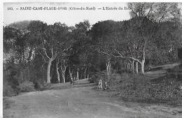 Saint Cast Plage D'Or. L'entrée Du Bois . - France