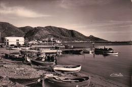 CPA ESPAGNE ROSAS Lonja De Pescadoy Muelle - Espagne