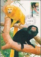 Brazil Stamp On Maximum Card - Monkeys