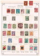 Natal Ancienne Collection Old Collection Altsammlung Oude Verzameling - Sammlungen (ohne Album)
