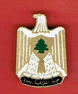 INSIGNE DE L UNION SOCIALISTE ARABE VERS 1980 FABRICATION ARTISANALE LIBANAISE LIBAN - Organisations