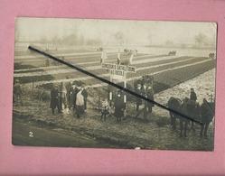 Carte Photo à Situer - Concours D Athlétisme Agricole ( Travaux Des Champs , Chevaux ) - Agricultura