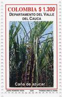 Lote 2403, Colombia, 2006, Depto Valle Del Cauca, Caña De Azucar, Sugar Cane - Colombia