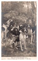 Dog ,Group Of Hunting Dogs - Dogs