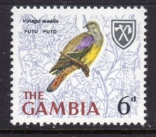 GAMBIA 1966 6d YELLOW-BELLIED GREEN PIGEON BIRD STAMP FINE MNH ** SG 239 - Gambia (1965-...)