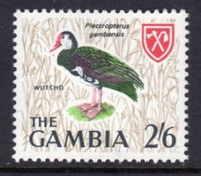 GAMBIA 1966 2/6d SPUR-WINGED GOOSE BIRD STAMP FINE MNH ** SG 242 - Gambia (1965-...)
