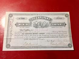 THE  CARUPANO  MINING  COMPANY ------Certificat  De  100 Actions - Mines