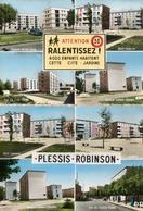 LE PLESSIS ROBINSON ( 92 ) -    ( 2  Cpsm ) - Le Plessis Robinson