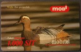 Prepaidcard Slowenien - Vogel,bird - Knäkente - 12/2000 - Slovenië