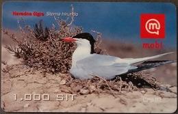Prepaidcard Slowenien - Vogel,bird - Flussseeschwalbe - 12/2002 - Slovenië