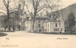 Belgique - Huy - Château Delloye - Nels Série 55 N° 84 - Hoei
