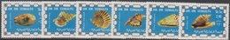 Somalia - 1976 Shells - Coquillages - Weichtiere Des Meeres - Conchiglie ** - Somalie (1960-...)