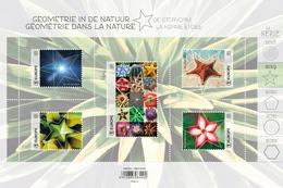 Géométrie Dans La Nature, Geometrie In De Natuur** De Stervorm - La Forme étoile MNH  Belgie - Belgique 2019 - Belgique
