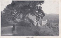 AR68 Tintern Abbey - Monmouthshire