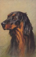 AS91 Animals - Dog - Setter, Artist Signed Arthur Wardle - Dogs