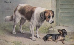 AS91 Animals - Dog - Small And Large Dog, Artist Signed C. Reichert - Cani