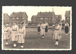 Houthalen - Originele Fotokaart Gevaert - Chiro St. Lutgart Meulenberg - Ca 1960 - Padvinderij