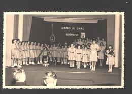 Houthalen - Originele Fotokaart Gevaert - Chiro St. Lutgart Meulenberg - Ca 1960 - Draag Je Chiro Juichend - Scouting
