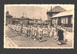Houthalen - Originele Fotokaart Gevaert - Chiro St. Lutgart Meulenberg - Ca 1960 - Scouting