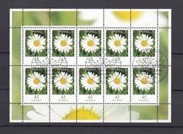 BRD - 2005 - Michel Nr. 2451 - Kleinbogen - Gest. - Used Stamps