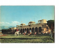 Liban Beyrouth Hippodrome Beirut Race Course CPSM GF - Líbano
