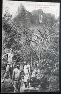Tahiti Postcard. Chasseurs Indigenes Suivant Le Piste D'un Porc Sauvage - Tahiti