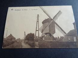 Belgique  België  ( 406 )    Eynthout   Eindhout  Molen   Moulin - Laakdal