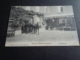 Belgique  België  ( 409 )   Calmpthout   Kalmthout   Cour De L' Hôtel Des Chasseurs - Kalmthout