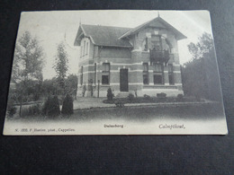 Belgique  België  ( 411 )   Calmpthout   Kalmthout   Duinsberg - Kalmthout