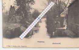 """AUSTRUWEEL-OOSTERWEEL-ANTWERPEN """" DE WATERLOOP""""HOELEN 806 UITGIFTE 05.05.1903 TYPE 2 - Antwerpen"""