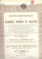 S.A. Belge Des Marbres, Pierres Et Granits - 1924 - Actions & Titres