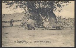 """EP Du Congo Au Type 10ctm Rouge """"Palmier"""" Voyagé. Verso Vue N°72 Eléphants Trainant Un Chariot. - Ganzsachen"""