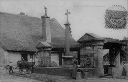 CPA De EPEUGNEY (Doubs) - La Fontaine. - Autres Communes