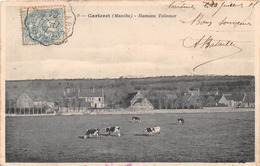 CARTERET - Hameau Tollemer - Carteret